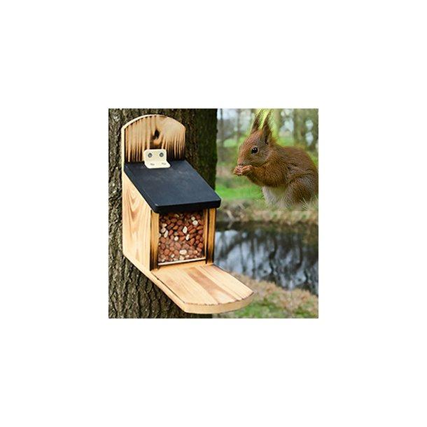 Egernfoderautomat