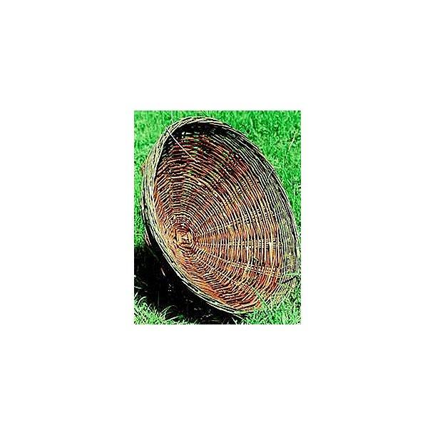 Musvågerede, høgerede, glenterede, Ø=70 cm